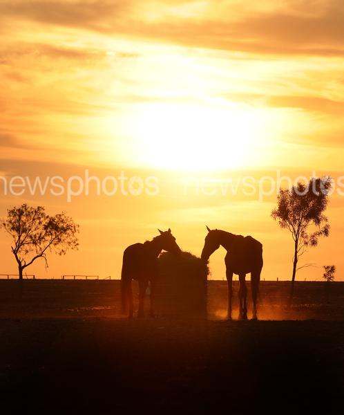 Heatwave Hits Queensland Outback