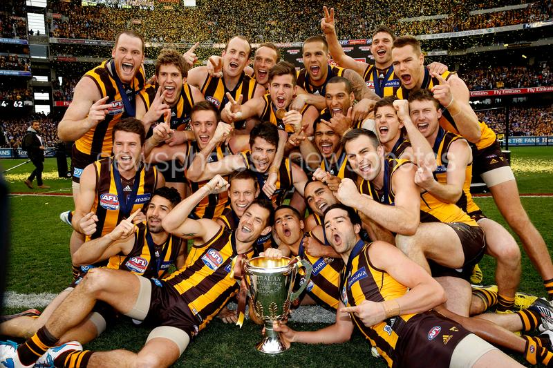 Hawthorn v Fremantle AFL Grand Final