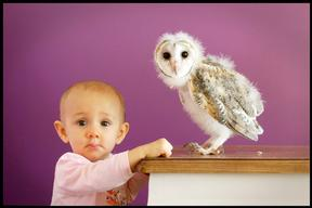 Baby Charlotte Jordan With Barn Owl Chick