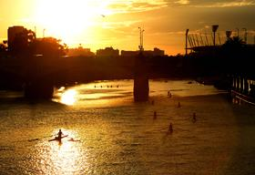 Rowers On The Yarra River