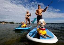 Paddle With Your Pooch Event Promotion